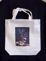 Another canvas bag decorated by Pam.
