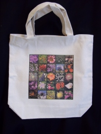 Pam's updated tis canvas bag with her computer and some special transfer sheets.